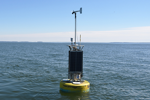 A new yellow CBIBS buoy is located at Gooses Reef.